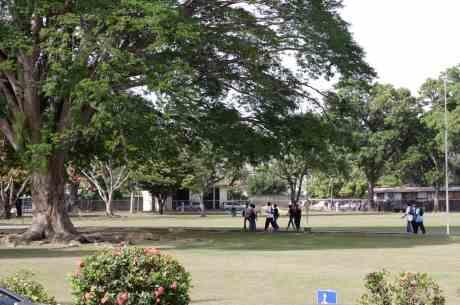 The UWI campus